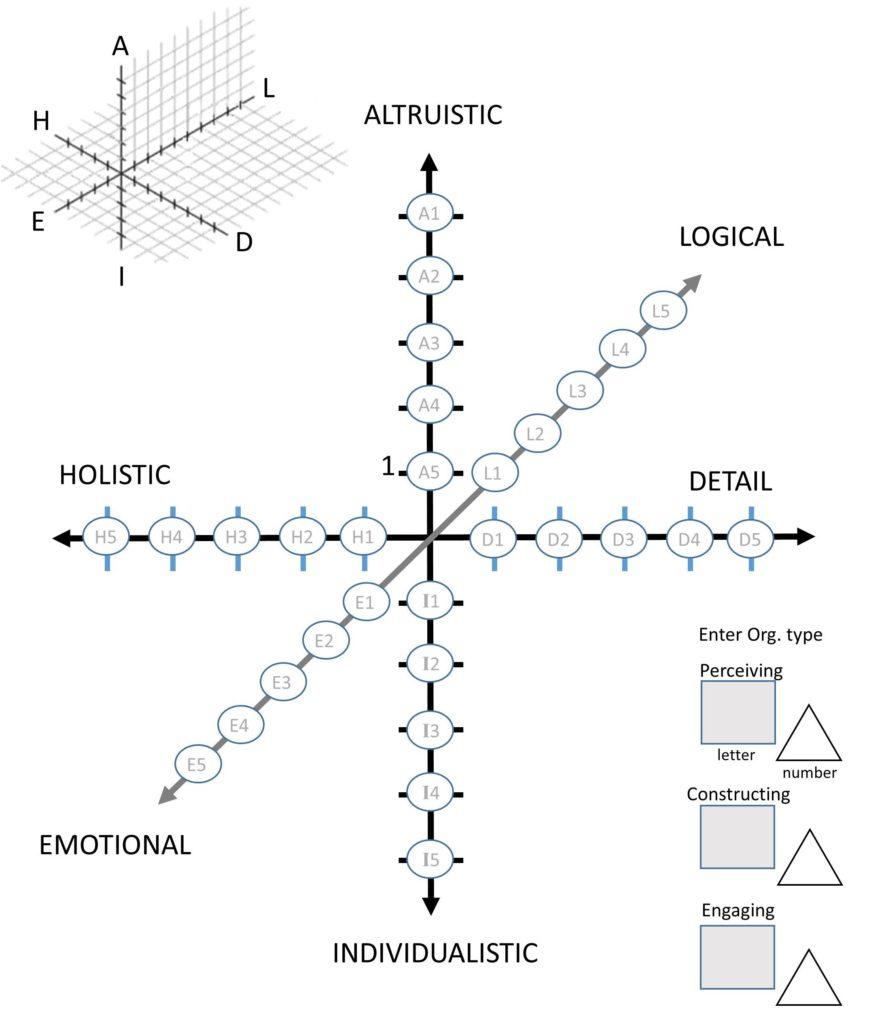 The Individual Organizational Harmonic Type Grid